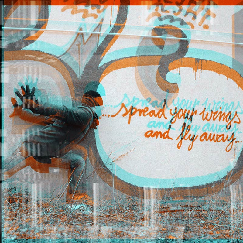 spread-your-wings-and-fly-away